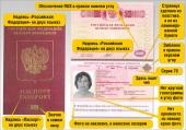 Биометрические загранпаспорта